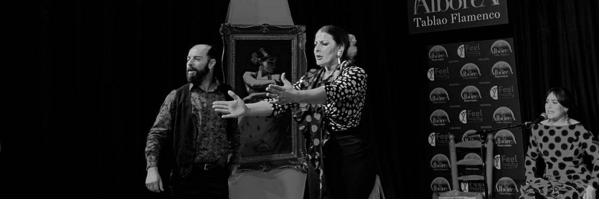 Espectáculo de flamenco Granada